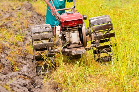 hard working farmer preparing the ground for the growth of rice in the north east of thailand Stock Photo - 13811778
