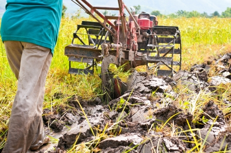 hard working farmer preparing the ground for the growth of rice in the north east of thailand Stock Photo - 13811779