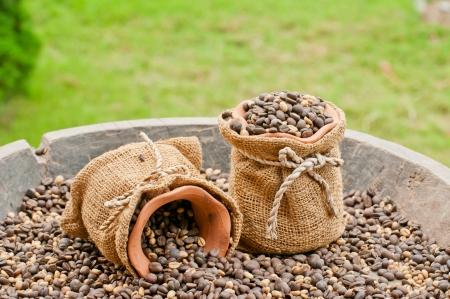 koffiebonen, smaak zaad achtergrond Stockfoto