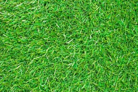 Seamless Artificial Grass Field Texture