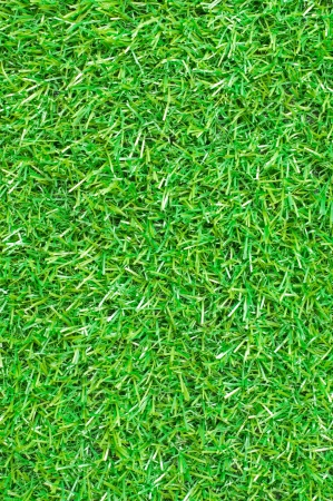 Seamless Artificial Grass Field Texture  photo
