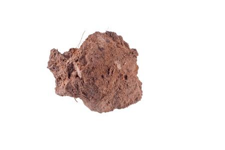 clod:  soil isolated on white  Stock Photo