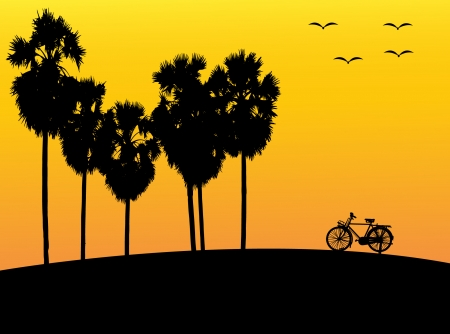 Silhouette of palm trees and bike at sunset Vector
