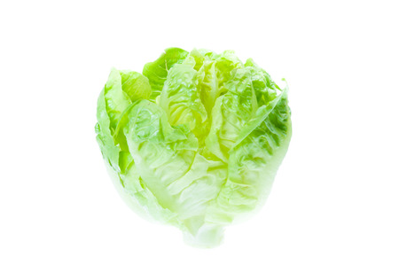 lactuca: Green Iceberg lettuce on White  Stock Photo