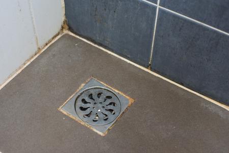 쇠 격자: Sewer grate  with different sorts of mold (close-up shot) in the bathroom. 스톡 사진