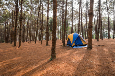 roughing: camping point