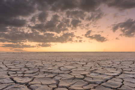 landscape: Soil drought cracked landscape sunset