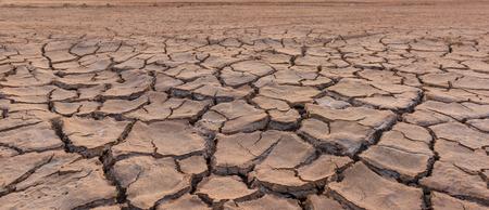 mire: drought land