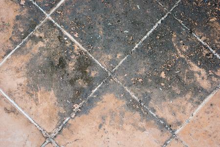 mildewed: Mildewed tiled floor Stock Photo