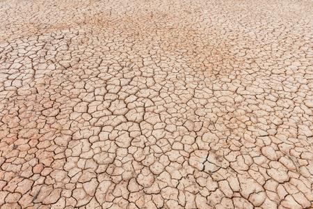 barrenness: soil crack texture background