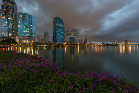bougainvilleas: Bangkok city with park at night with reflection of skyline, Bangkok,Thailand