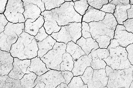 background texture: Crack soil texture background