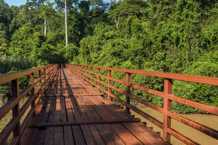 Wooded bridge over the river to forest at Khao Yai National Park, Thailand