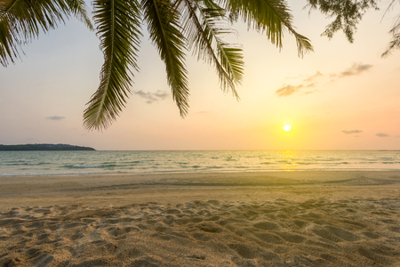 Sunset sky over tropical sea with beautiful beach and coconut tree Stock Photo