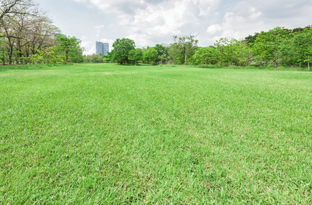 Green grass field in park at city center Stock Photo