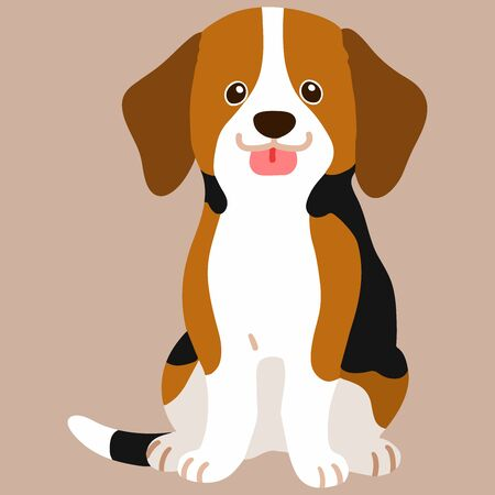 Flat colored Beagle sitting in front view