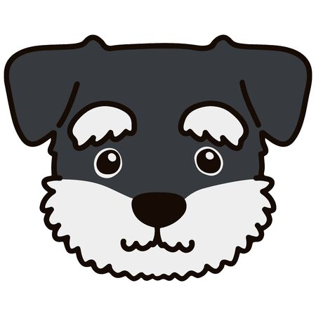 Miniature Schnauzer front head outlined