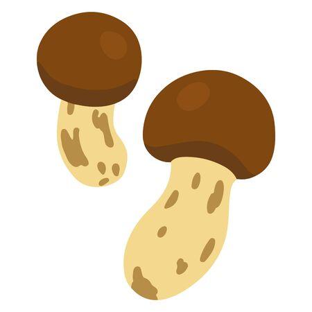 Illustration of flat colored matsutake mushroom