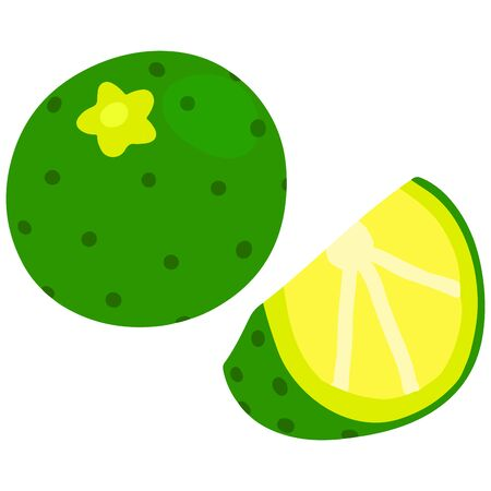 Flat colored simple green lime sliced