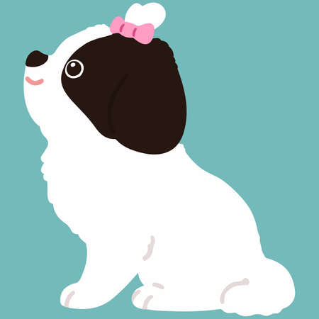Flat colored Shih Tzu sitting with pink ribbon side view