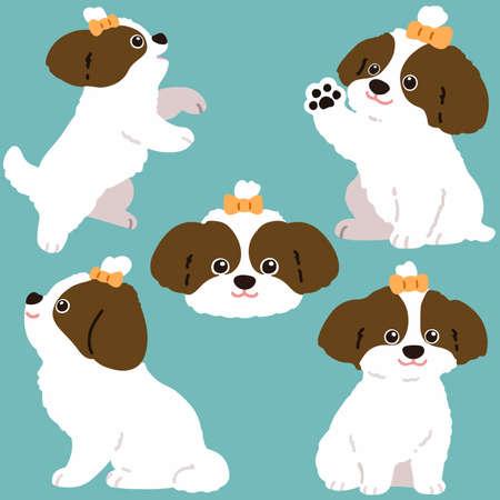 Set of flat colored brown Shih Tzu dog illustrations Illustration