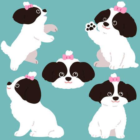 Set of flat colored Shih Tzu dog illustrations Illustration