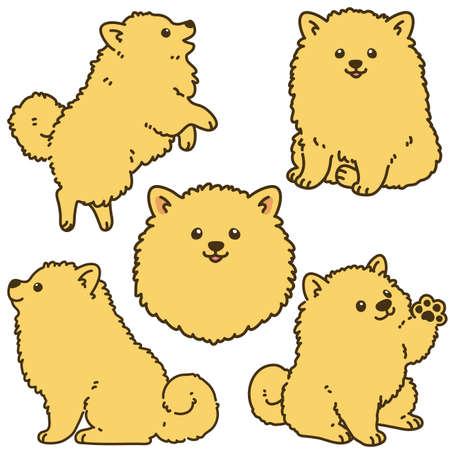 Set of outlined light brown Pomeranian illustrations