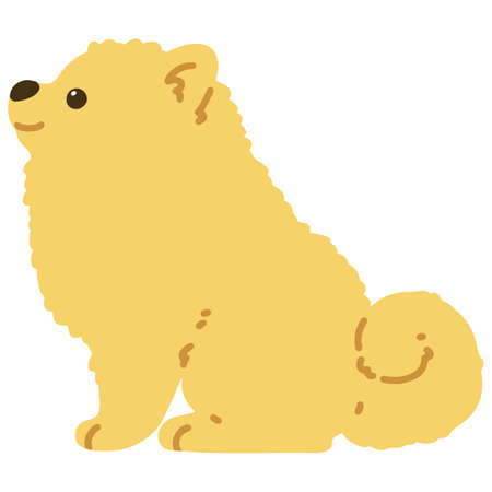 Flat colored Pomeranian sitting side view