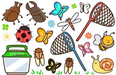 Set of various insects and butterfly nets