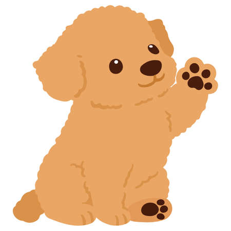 Flat colored Chihuahua Poodle Mix Puppy sitting waving hand