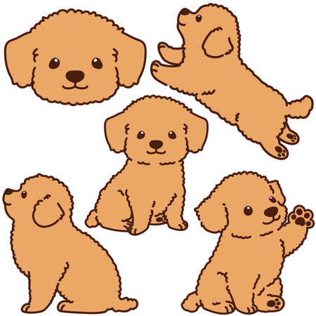 Outlined Chihuahua Poodle Mix puppy illustrations set