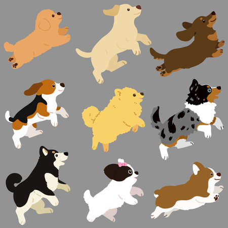 Set of flat colored cute and simple dog jumping and playing