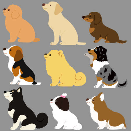 Set of flat colored cute and simple dog sitting in side view 向量圖像