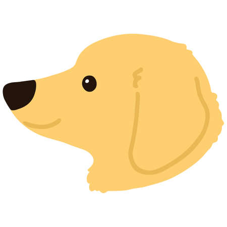 Flat colored golden Miniature Dachshund side face