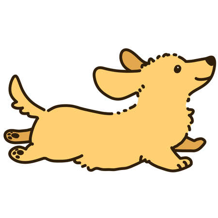 Outlined golden Miniature Dachshund jumping