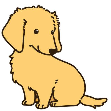 Outlined golden Miniature Dachshund sitting