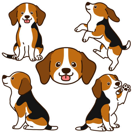 Outlined Beagle different poses set