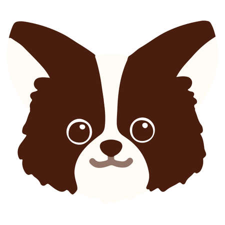 Flat colored dark brown chihuahua head front view