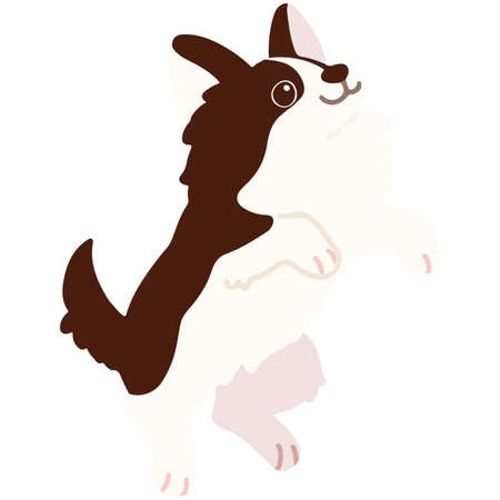 Flat colored dark brown chihuahua jumping  イラスト・ベクター素材
