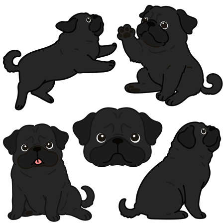 Set of outlined simple and cute black pug illustrations