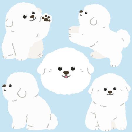 Flat colored white Bichon Frize illustrations set