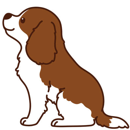 Outlined Brown Cavalier King Charles Spaniel sitting in side view