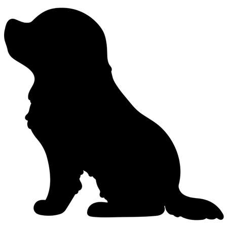 Silhouette of Cavalier King Charles Spaniel sitting in side view