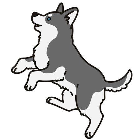 Adorable outlined gray Husky dog jumping illustration