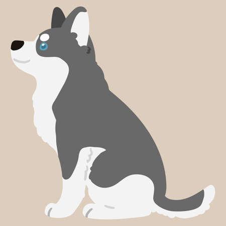 Adorable flat colored gray Husky dog sitting in side view illustration Vektorové ilustrace