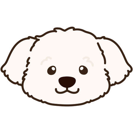 Outlined simple and adorable white Maltese dog front head illustration
