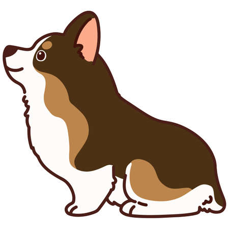 Outlined cute sable colored Corgi sitting in side view