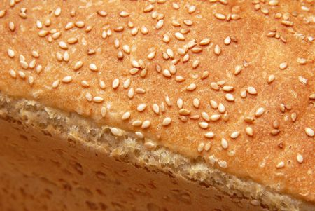 loaf of wheat bread by a large plan photo