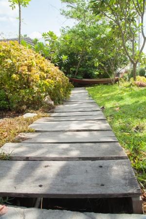 Wood walkway VII photo