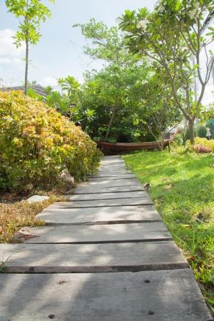Wood walkway VI photo
